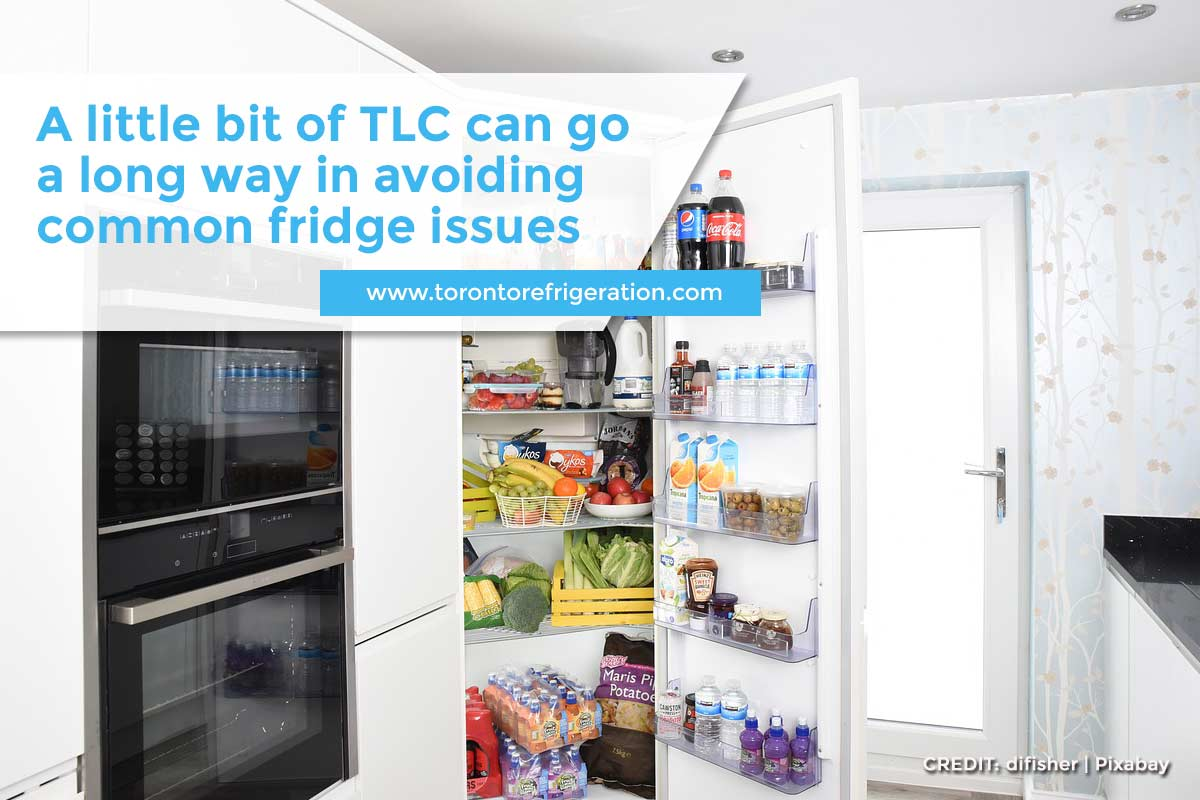 A little bit of TLC can go a long way in avoiding common fridge issues