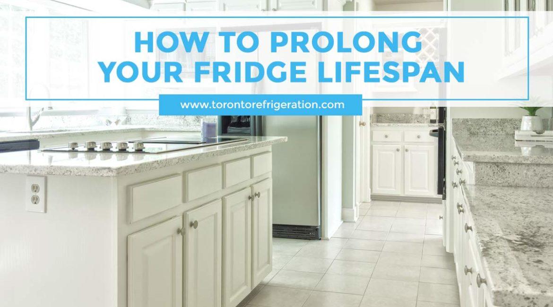 How to Prolong Your Fridge Lifespan