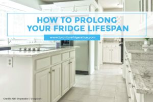 How to Prolong Your Fridge Lifespan