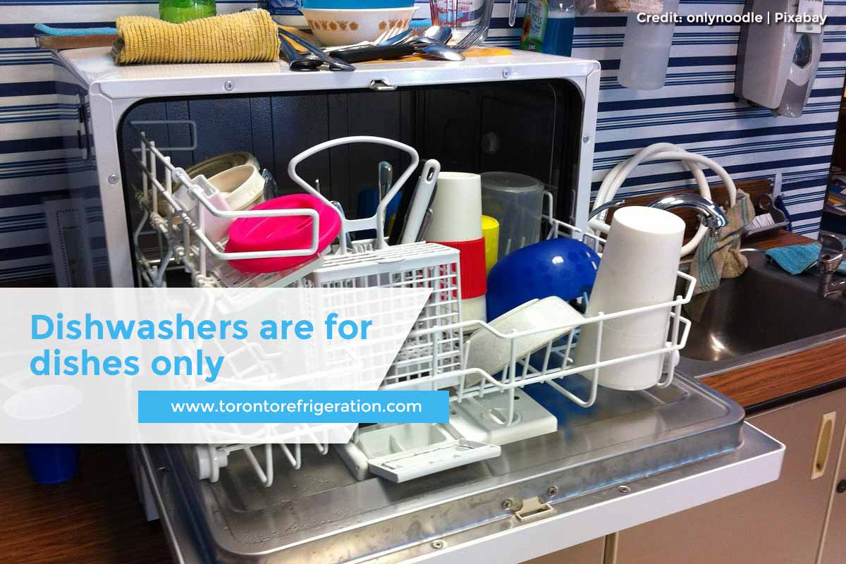 Dishwashers are for dishes only
